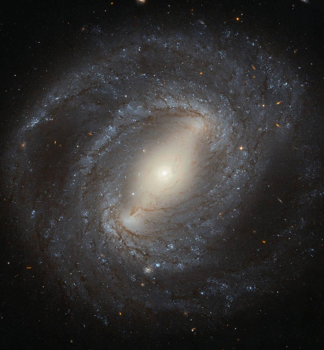 2016.05.06:棒渦巻銀河って何?