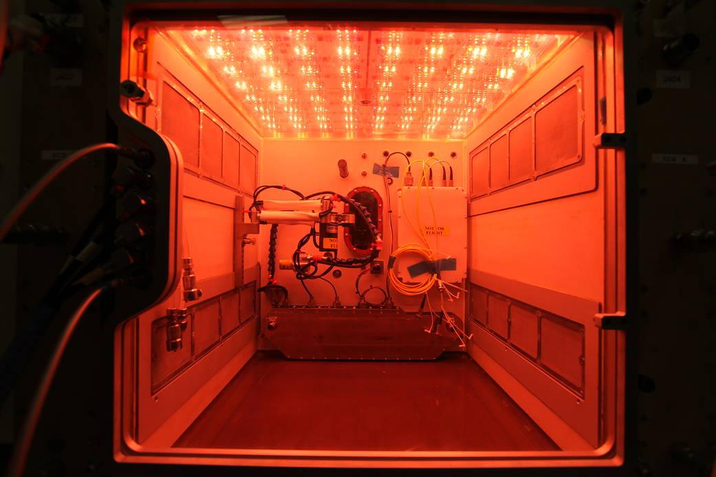 2016.11.24:宇宙ステーションの次世代植物栽培のプロトタイプ